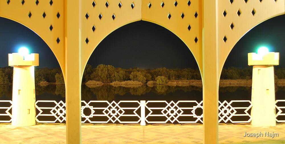 Oriental Night by Joseph Najm
