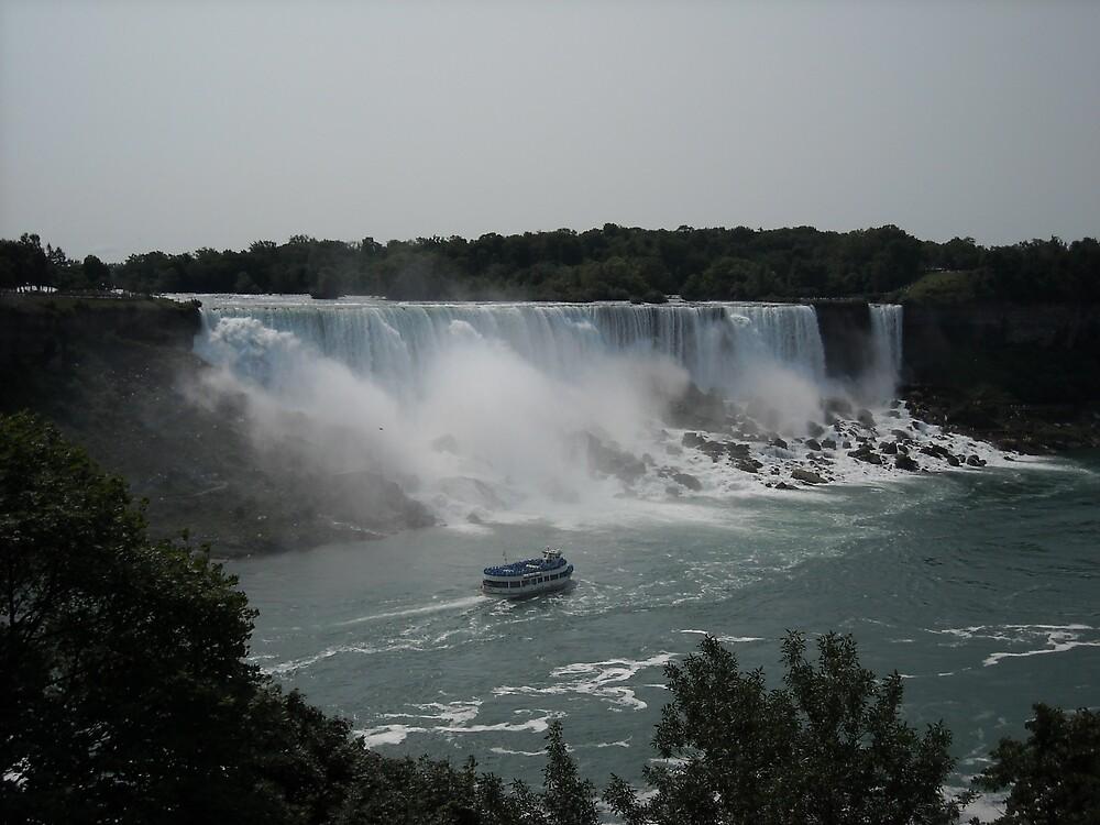 American Falls by Rachel Harris