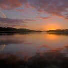 In Reflection - NarrabeenLakes, Sydney Australia  -Landscape  by Philip Johnson