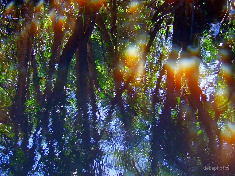 """Reflected Bush"" by debsphotos"