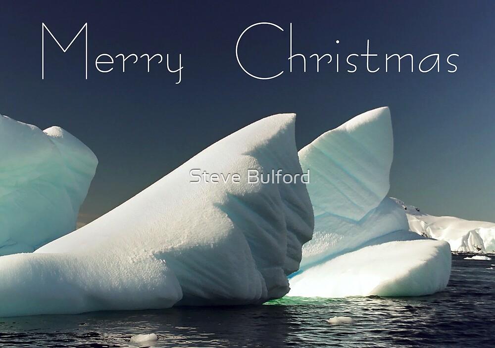 Ice - Christmas Card by Steve Bulford