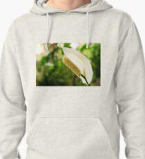 Anthurium Pullover Hoodie