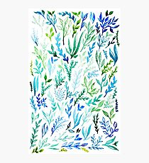 Blue and Green Botanical Pattern  Photographic Print