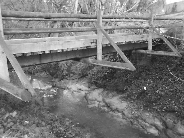 Bridge by Zoee W