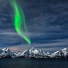 Aurora by Mieke Boynton