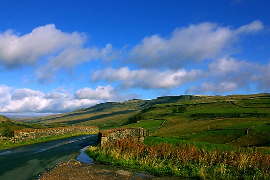The Road to the Dales by Trevor Kersley