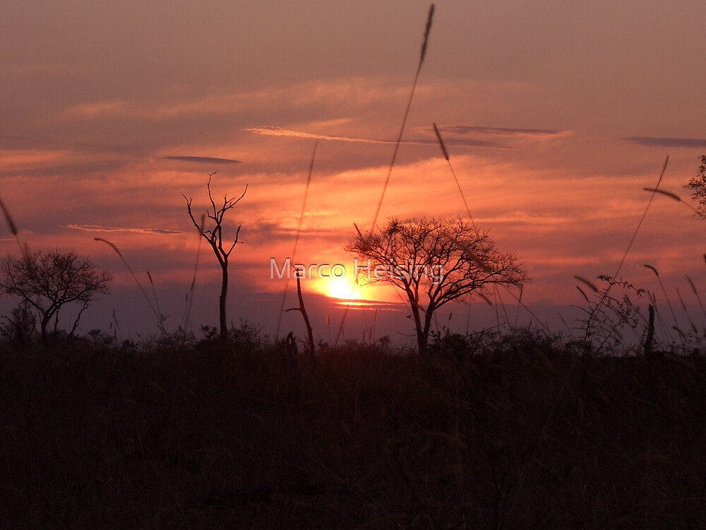 African Sunset 2 by Marco Heising