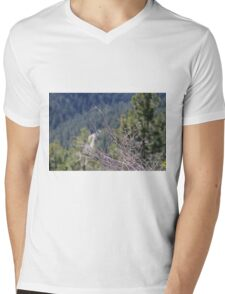 Brush Mens V-Neck T-Shirt