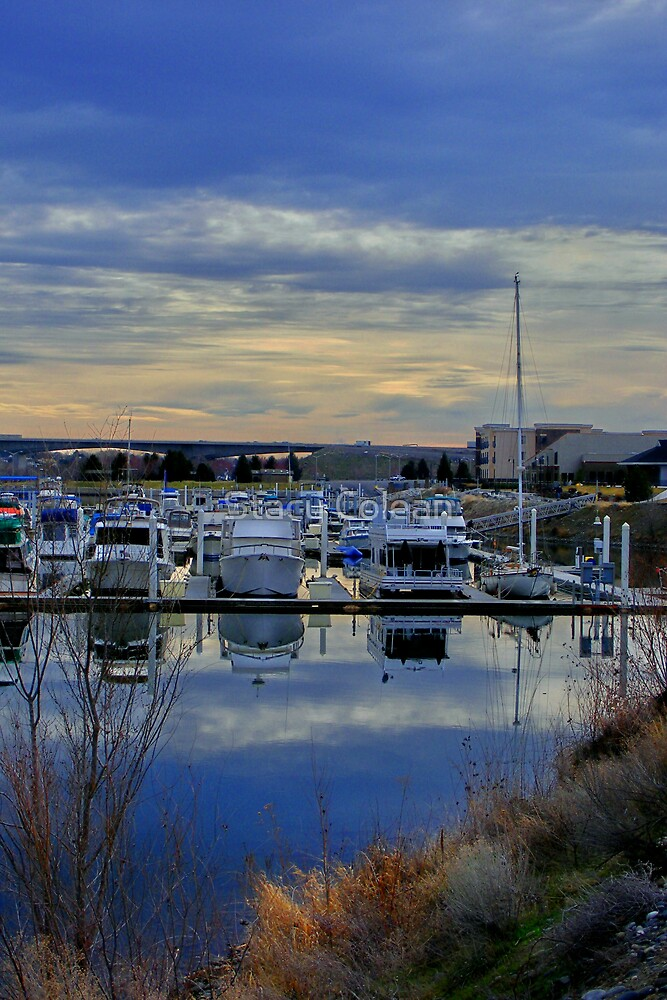 Beautiful Boat Dock by Stacy Colean