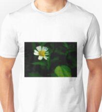 Erigeron T-Shirt