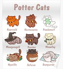 potter cats Poster