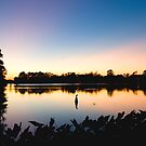Night Falls in Baton Rouge by Bonnie T.  Barry