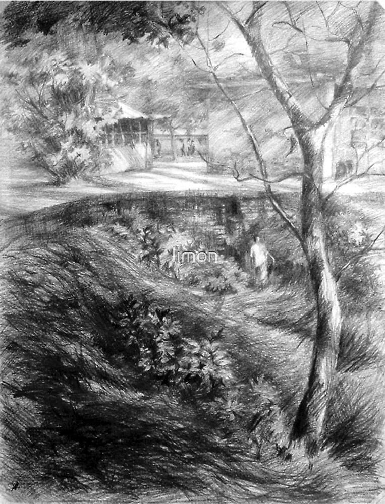 landscape by limon