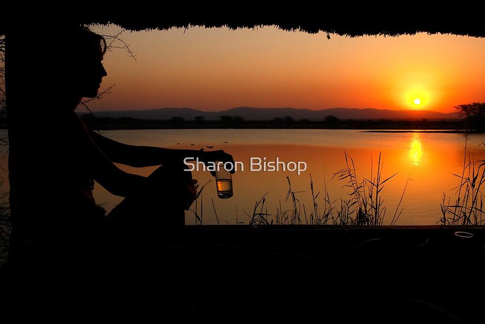 The ultimate sundowner by Sharon Bishop