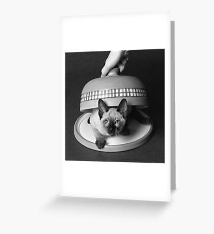 Kitty Cheese! Greeting Card