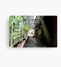 Path of Destruction Canvas Print
