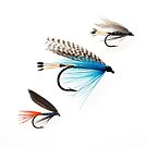 Fishing Lures by Andrew Bret Wallis