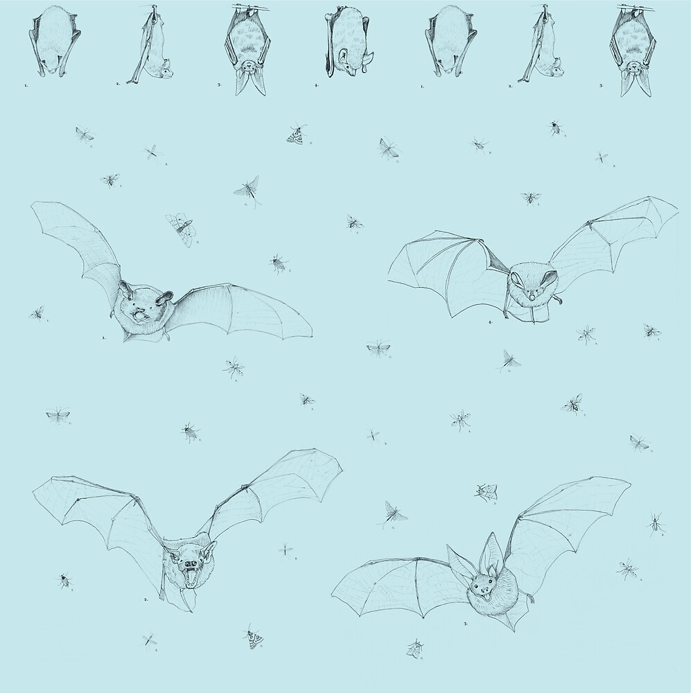 London Bats by Anna Walsh