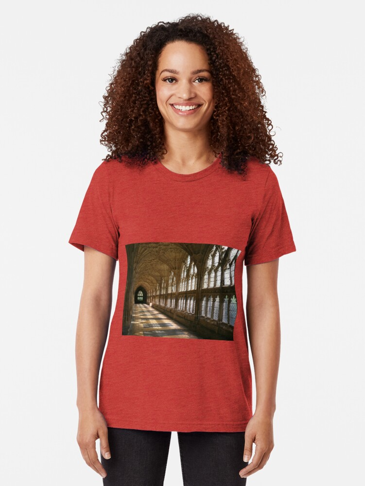 Alternate view of Cloister Shadows Tri-blend T-Shirt