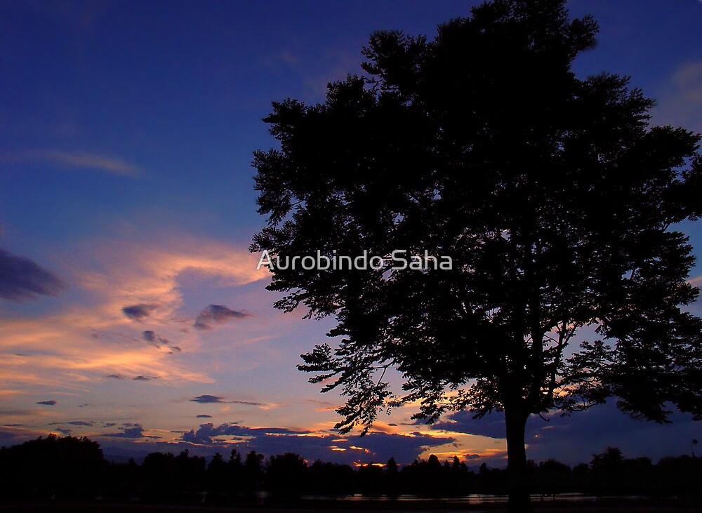 Lone Tree by Aurobindo Saha