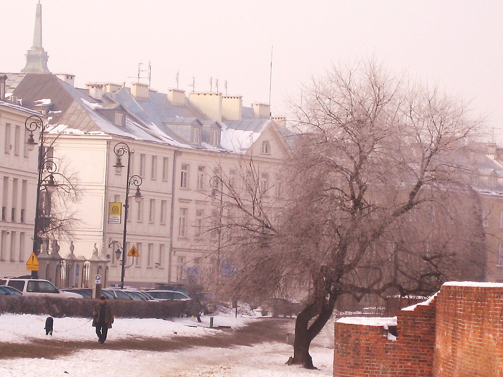 """""""A Cold Day in Warsaw"""" by helenahlg"""