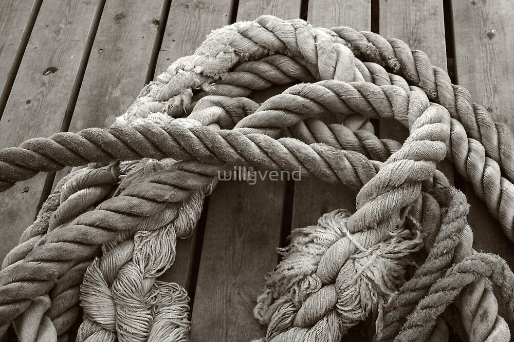 Mooring ropes by Willy Vendeville