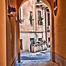 ROME : - ENTRANCE TO THE YARD... by vaggypar