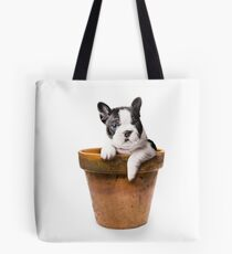 Potted Pooch Tote Bag