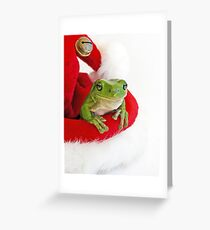 Santa's Little  Green Helper Greeting Card