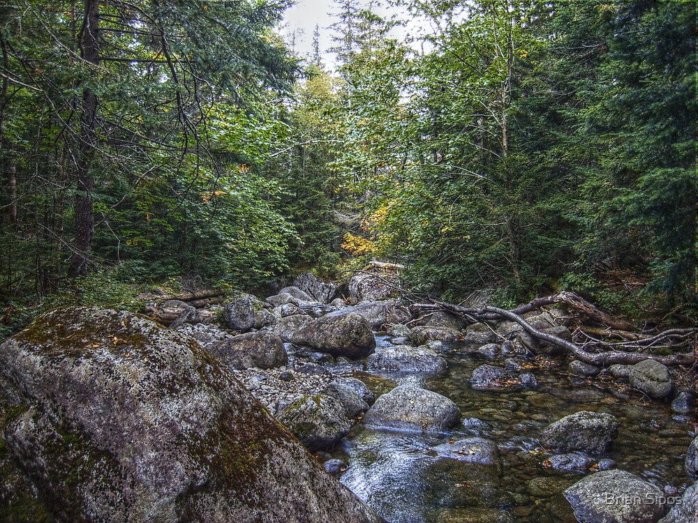 Mountain stream in early Fall #2 by Brian Sipos
