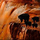 Bears Fishing on a Waterfall by Chiwow-Media