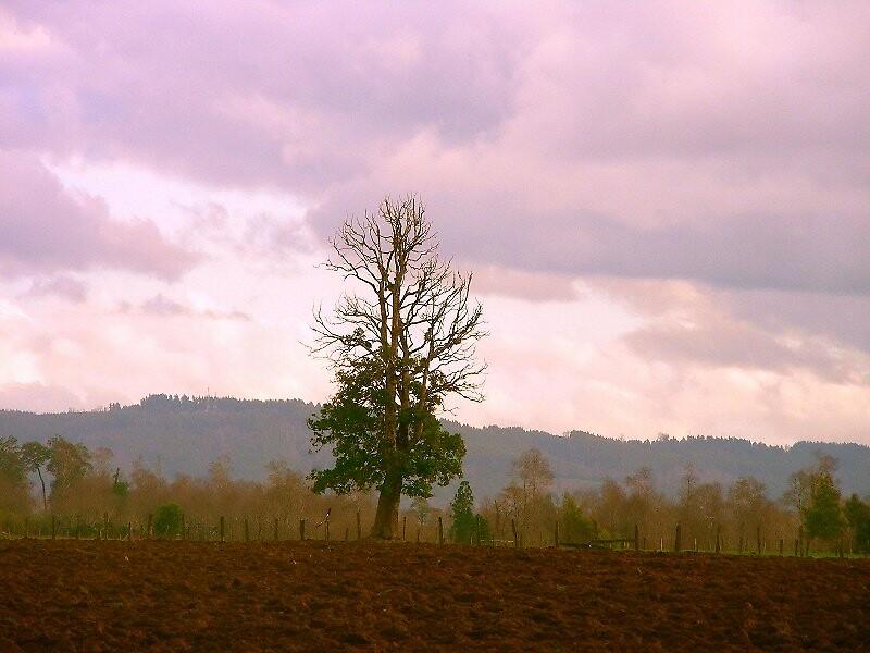 Cielo y tierra... by cieloverde