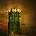Tulips by Heather Prince