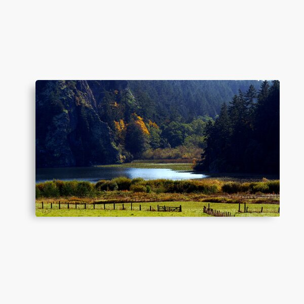 Headwaters of Lake Campbell Canvas Print