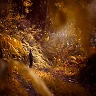 Lost in the Forest by Diogo Pereira