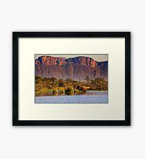 Elephant in Paradise Framed Print