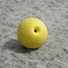 Buoy on a Hebridean Beach by BlueMoonRose