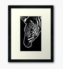 Leucism: Plains Zebra Framed Print