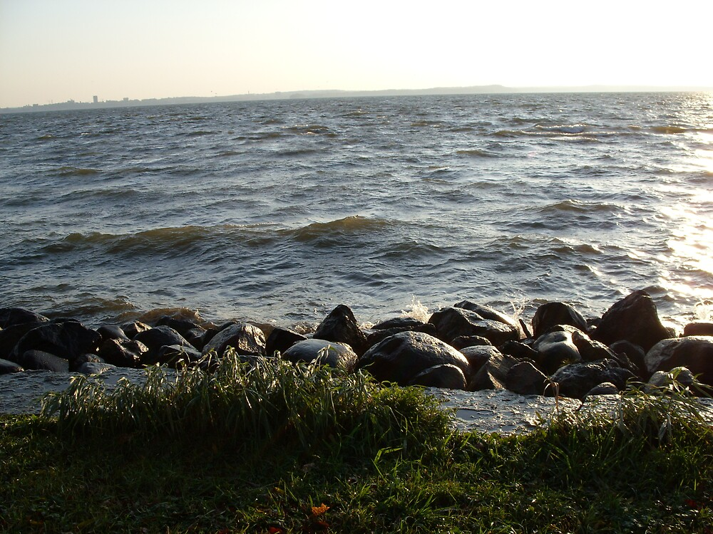 The Rocky Shore by hollypen68