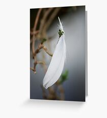 Suspended white feather Greeting Card