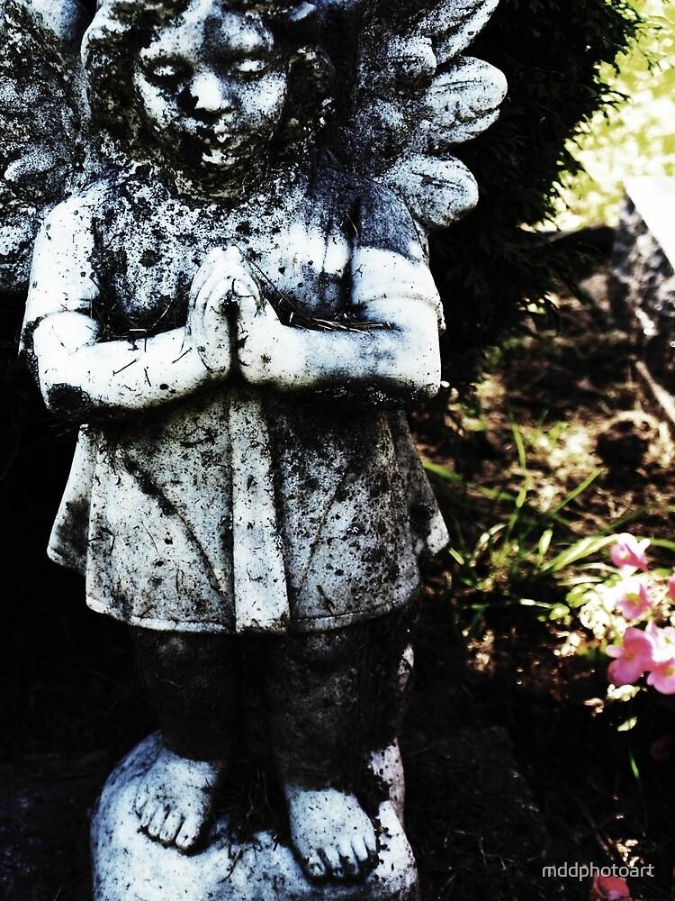 Little Angel by mddphotoart
