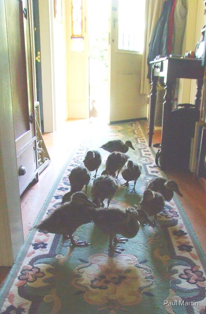 Ducks in the Hallway by Paul Martin