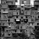 Stacked by Hena Tayeb