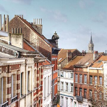 Brussels chimneys by DickPountain