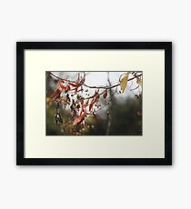 Autumn Leaves in Cambridgeshire England Framed Print