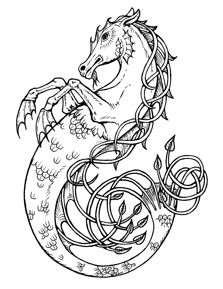 Sea Horse Knotted by Cleave