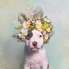Flower Power, Ahoy by SophieGamand