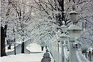 Winter Old Bennington Vermont U.S.A. by John Schneider