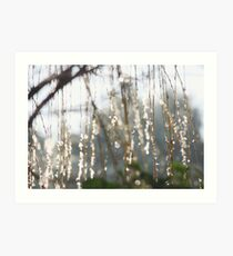 Sparkling ice crystals on weeping willow Art Print