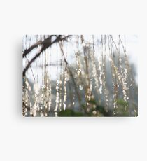 Sparkling ice crystals on weeping willow Metal Print